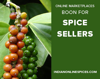 sell-spices-online